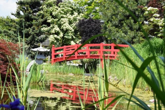 Ogrody japońskie w Pisarzowicach. Przeglądaj za pomocą gestów lub strzałki, by zobaczyć kolejne zdjęcie