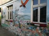 Zjawiskowe murale w podwórkach na wrocławskim Nadodrzu. Zobacz!