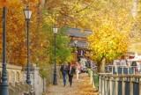 Krynica-Zdrój przyciąga turystów i kuracjuszy również jesienią. Ale tam pięknie
