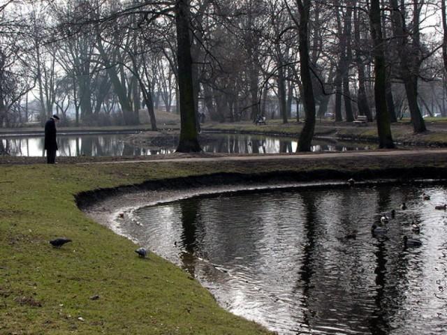 Wiosenny spacer. / Fot. Patrycja Cychner