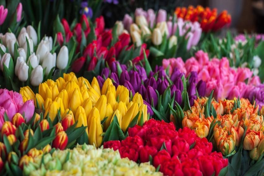 Kolory kwiatów mają znaczenie. Warto wiedzieć jaki kolor...