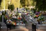 Cmentarz w Chodzieży w wiosenne popołudnie. Spokój i zaduma [ZDJĘCIA]