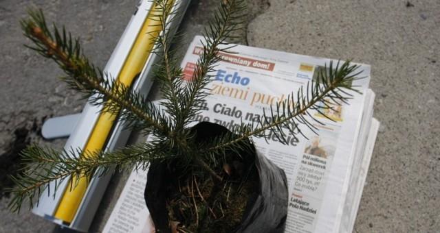 Puck - zasadź drzewko na 100-lecie Zaślubin Polski z Morzem