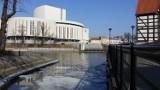 Pogoda Bydgoszcz, poniedziałek 12 marca. Szykuje się ciepły dzień!