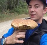 Dolny Śląsk: Czy warto jechać na grzyby? Oto odpowiedź!