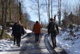 Pomysł na weekend. Góry Opawskie pełne turystów! Zobaczcie zdjęcia