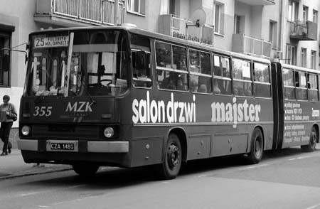 Na paliwie rzepakowym mogłyby jeździć miejskie autobusy.ZDJĘCIE: TOMASZ ZABOROWICZ