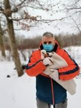Pracownicy zoo uratowali bociana ze Śródki. Ptak był bardzo zziębnięty. W akcji pomogli poznaniacy