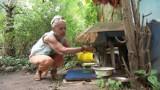 Chcieli zabrać jej działkę, bo dokarmiała koty. Ewa Łazowska opowiedziała o swych zmaganiach (wideo)