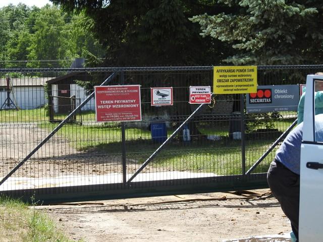 ASF w chlewni w Szczytach (gmina Orla) należącej do Gospodarstwa Rolnego w Parcewie
