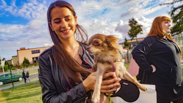 Z okazji Międzynarodowego Dnia Psa w Inowrocławiu odbyła się impreza dla zwierzaków