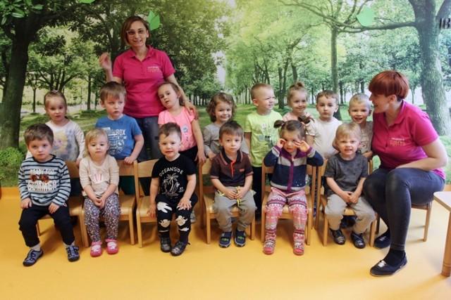"""Przedszkole na medal. Grupa """"Bees"""" z Akademii Happy Kids w Jeleniej Górze walczy o wasze głosy"""