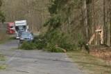 Wichura na Pomorzu 23.04.2019. Drzewo spadło na busa. Zerwane dachy