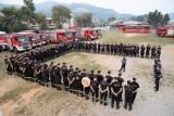 Pożary w Grecji. Pleszewscy strażacy zaczynają dziś gasić ogień na Evii