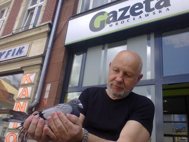 Roman Zaremba z gołębiem pocztowym, który wylądował w naszej redakcji