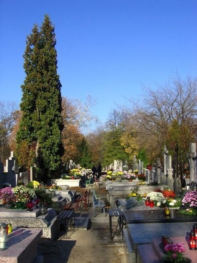 Cmentarz Bródnowski - zdjęcie ilustracyjne.