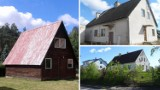 Domki letniskowe na sprzedaż! Poczta Polska wyprzedaje tanio nieruchomości