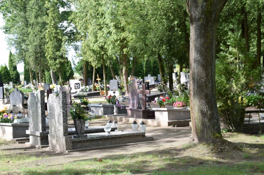 Cmentarz Komunalny W Międzychodzie Cmentarne Hieny