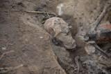W Zęblewie w gminie Szemud archeolodzy odkryli szczątki żołnierzy niemieckich z okresu drugiej wojny światowej