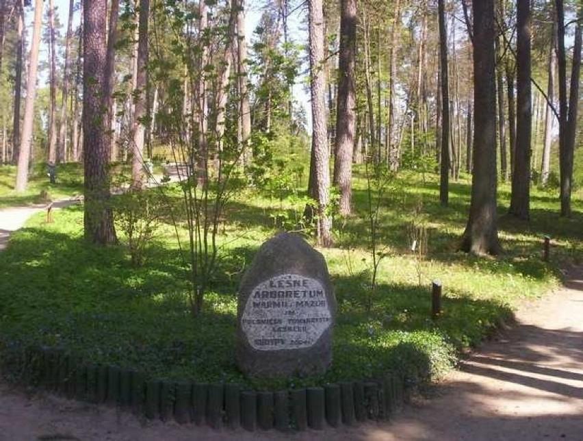 Lokalizacja: Kudypy, woj. warmińsko-mazurskieLeśne...