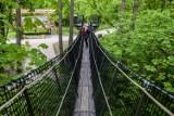 Spacer wśród koron drzew w Pomiechówku. Zobaczcie to spotkanie z naturą pod Warszawą