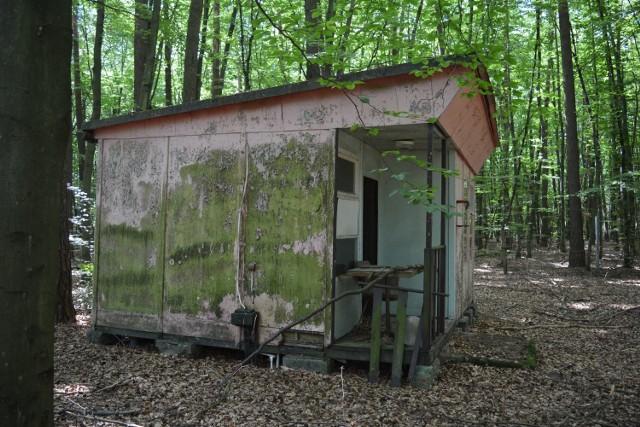 Żory, Woszczyce: to miejsce w środku lasu budzi grozę. Opuszczony ośrodek kolonijny.