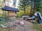Aktywiści zaśmiecają las w okolicach Mucznego? Tak twierdzą leśnicy i publikują fotografie [ZDJĘCIA]