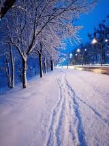 Piękna zima w Żorach. Ileż śniegu nasypało! [ZDJĘCIA MIESZKAŃCÓW]