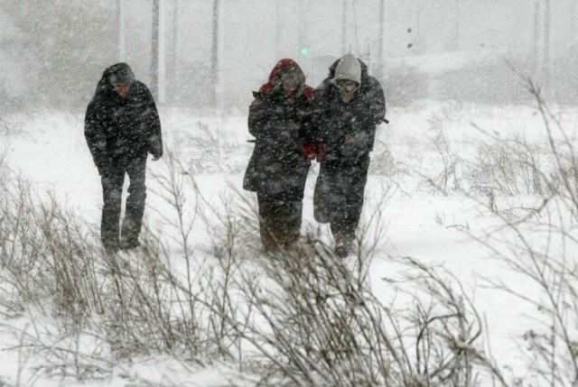 Zamiecie i zawieje śnieżna dotkną wiele wielkopolskich powiatów. Silny wiatr sprawi, że temperatura odczuwalna będzie znacznie niższa.