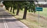 Tragiczny wypadek niedaleko Nowej Soli. W czasie prac leśnych zginął pilarz. Sprawę bada prokuratura