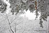 Gostyń. Prognoza pogody na weekend dla Gostynia i powiatu gostyńskiego. Czy to będzie kosztowny i mroźny weekend na drogach powiatowych?