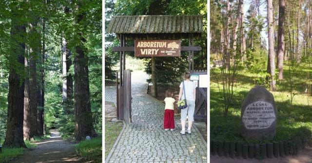 """Ogrody botaniczne w północnej Polsce. Oto miejsca idealne na jednodniową wycieczkę! Gdzie warto się udać? Podpowiadamy!  Kliknij w kolejne zdjęcia i sprawdź szczegóły >>>  Oto miejsca w kategorii """"must-see""""! Gdzie znajdziemy najpiękniejsze ogrody botaniczne w regionie? Całe szczęście - jest w czym wybierać!"""