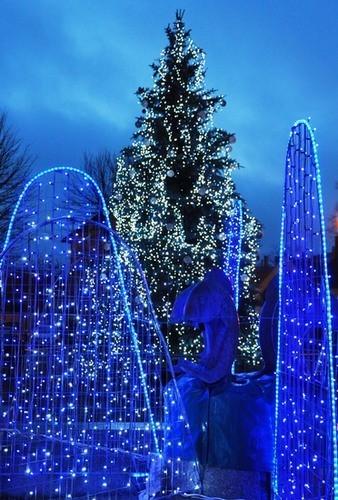Wspaniałe iluminacje świetlne w centrum miasta, bajkowa choinka na Placu Ostrowskiego, podświetlona fontanna - to wszystko tworzy wspaniały klimat.