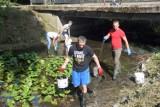 Sprzątanie Bolemki w Chodzieży: 30 osób oczyszczało rzeczkę w czynie społecznym. Zebrali 15 worków śmieci