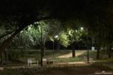 Magiczna i tajemnicza jesień w parku przypałacowym Żarach. Widoki jak z bajki. Zobaczcie sami!