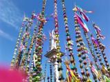 Konkurs palm wielkanocnych w Lipnicy Murowanej [WIDEO]