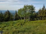 Leśny Dwór – wybierz ten pensjonat, jeżeli oczekujesz komfortowego noclegu w Karpaczu