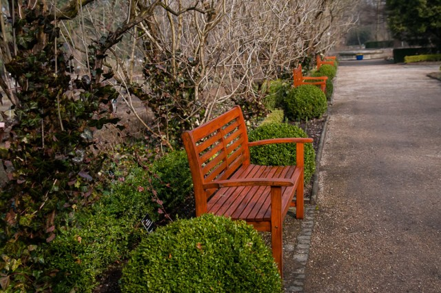 Ogród Botaniczny UW otwiera się w weekend. Sprawdźcie, dlaczego warto się tam wybrać! [ZDJĘCIA]