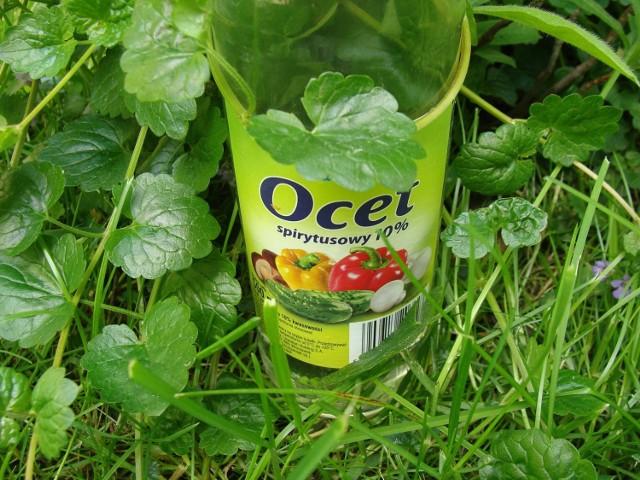 Ocet ma wiele zastosowań - nie tylko spożywczych. Przyda się również w ogrodzie. Zobacz, do czego można go użyć.