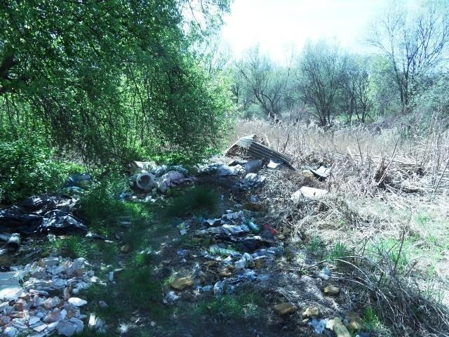 Na działkach przy ul. Bytomskiej od kilku lat śmieci przybywa coraz więcej
