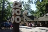 Zoo w Łodzi przedłuża godziny otwarcia