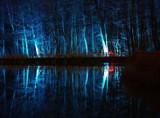 Podświetlenie lasu nad zalewem w Lisowicach. Można je podziwiać codziennie wieczorem