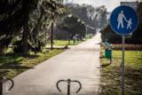"""Park Śląski od 20 marca. Co zmieni lockdown? Wizyta w zoo, w skansenie i przejażdżka kolejką linową """"Elka"""""""