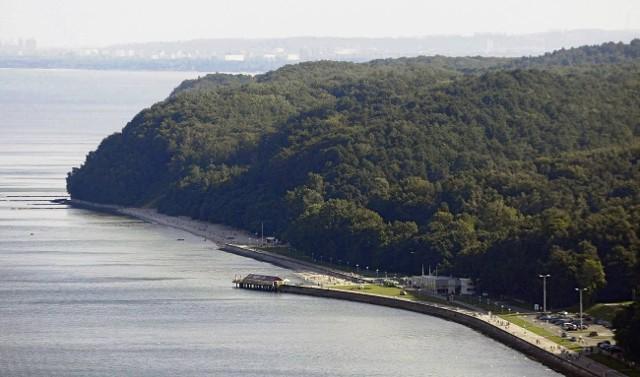 Rezerwat Kępa Redłowska to unikatowy teren w skali całej Europy
