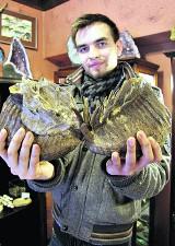 Dary ziemi sprzed setek milionów lat w Lublinie