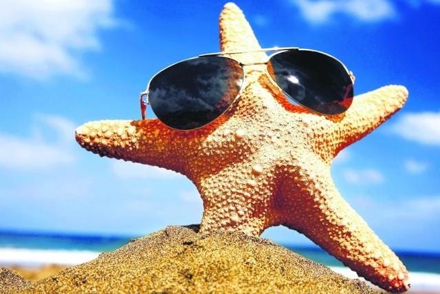 Na zagraniczną plażę trzeba przeważnie dolecieć samolotem. To w tym roku wyjątkowo wysoki wydatek