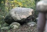 Tajemniczy głaz w legnickim Lasku Złotoryjskim [ZDJĘCIA]