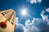 Piekielne temperatury w Lubuskiem. Gdzie najgoręcej?