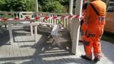 Jaworzno. Dewastacja w Parku Angielskim. Wandal zniszczył altanę