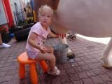Wakacyjna impreza dla dzieci u strażaków z OSP Chełmno. Czwartek profilaktyczny. Zdjęcia